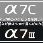 SONY α7Ⅲとα7C どっちを買うべき?【なぜ僕はα7Ⅲを選んだのか解説】